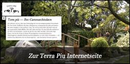 Terra Piu Internetseite