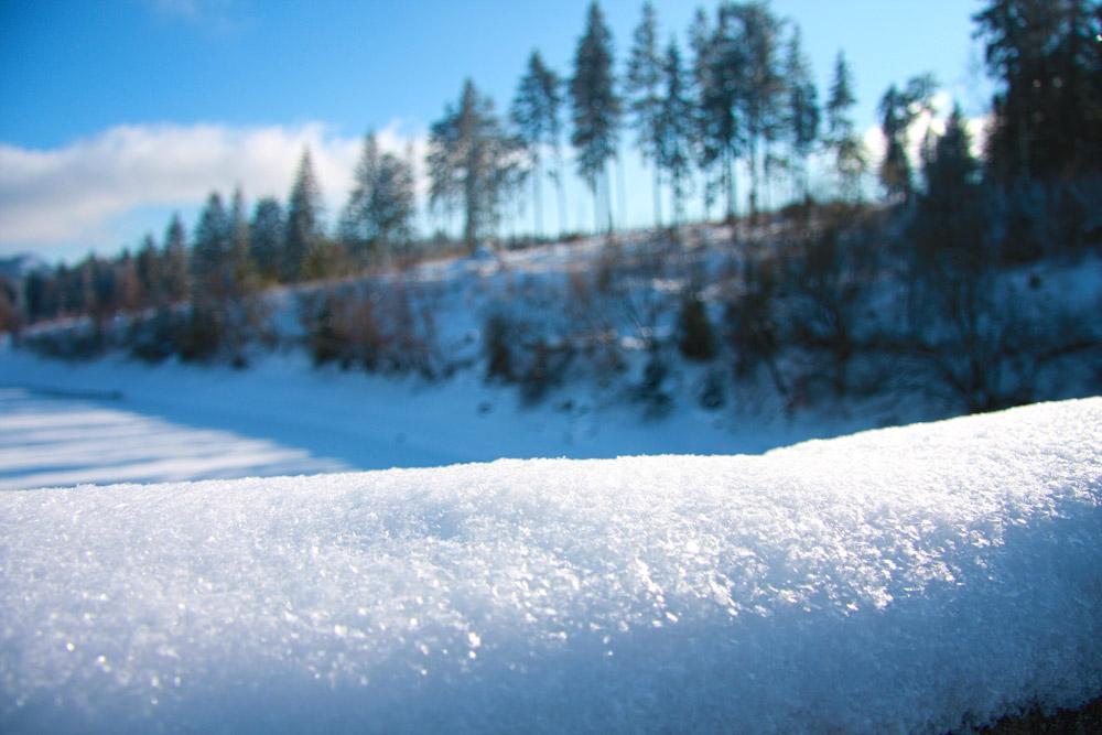 Eckertalsperre Harz Winter