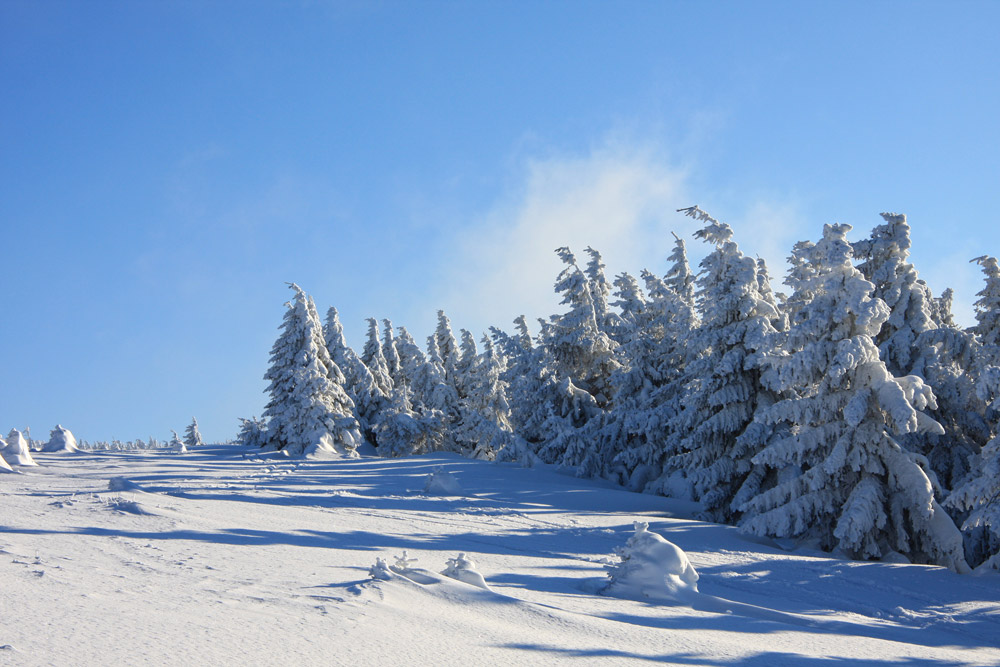 Blick auf den Brocken im Winter