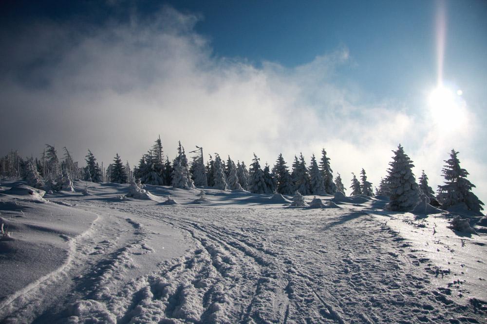 Winterfoto im Harz
