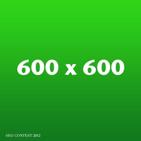 Hochgeschwindigkeitsseo mit 600×600 Pixel und 30% komprimiert